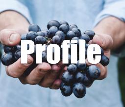 profile-top